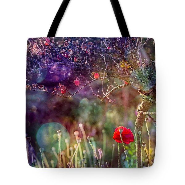 Abandoned Garden Tote Bag