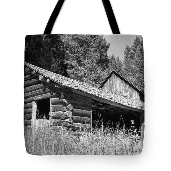Abandoned Homestead Tote Bag by Richard Rizzo