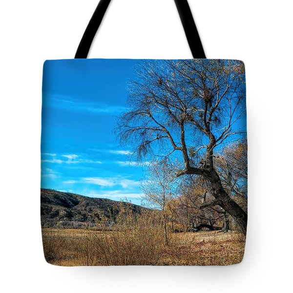 Forgotten Park Tote Bag