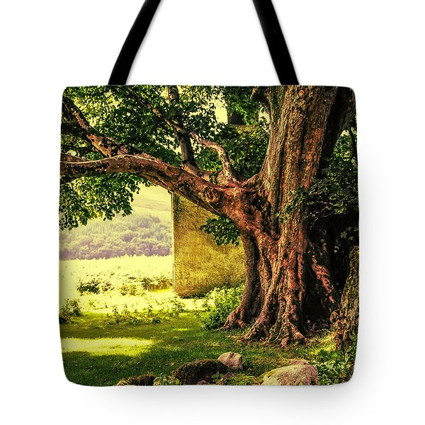 Abandoned Ruins Tote Bag by Jenny Rainbow