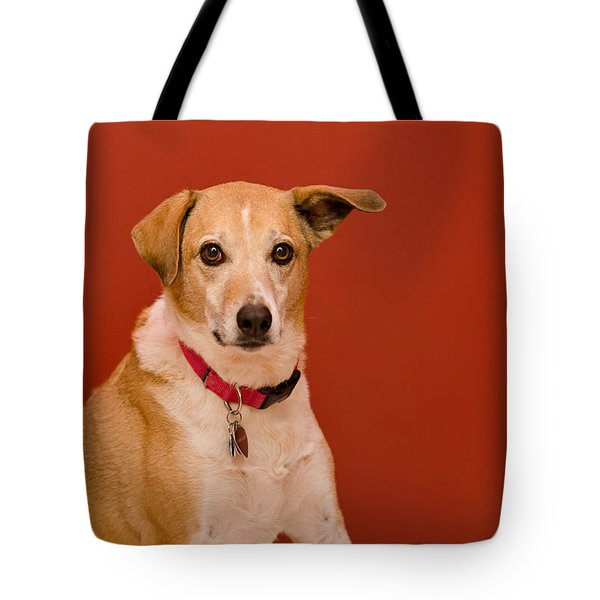 Tote Bag featuring the photograph Abbie 1 by Irina ArchAngelSkaya