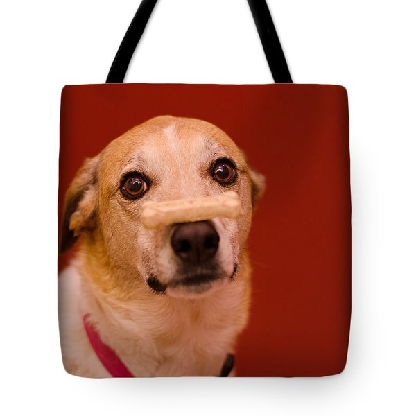 Tote Bag featuring the photograph Abbie And A Bone by Irina ArchAngelSkaya