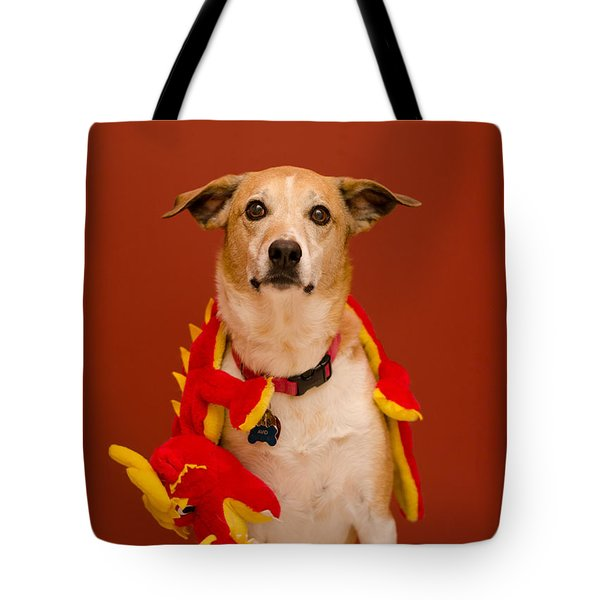Abbie And A Dragon Tote Bag