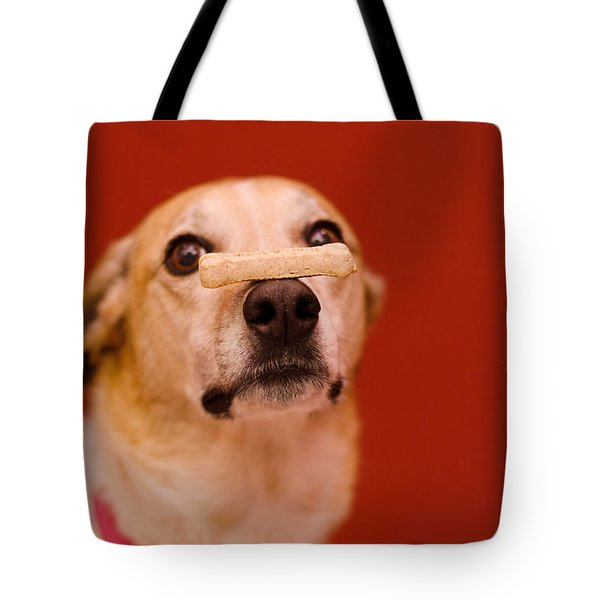 Tote Bag featuring the photograph Abbie And A Milky Bone by Irina ArchAngelSkaya