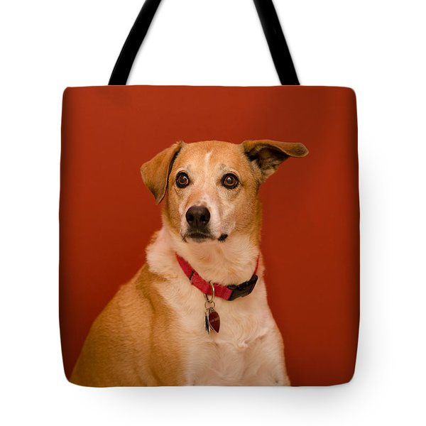 Tote Bag featuring the photograph Abbie by Irina ArchAngelSkaya