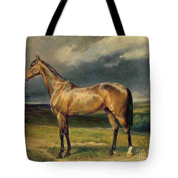 Abdul Medschid The Chestnut Arab Horse Tote Bag