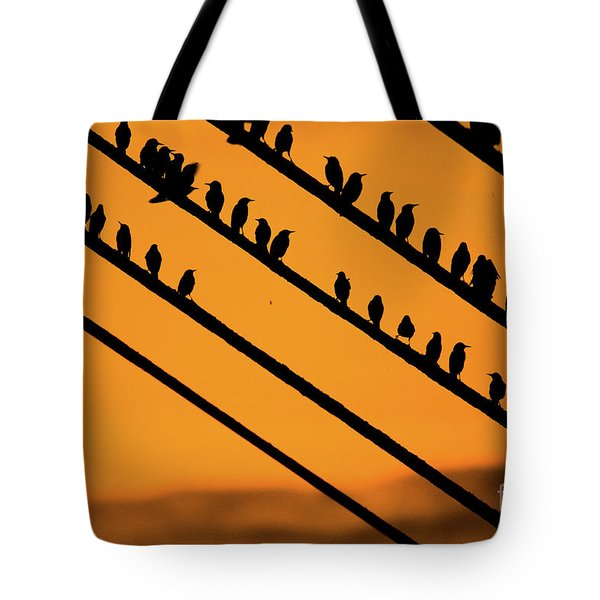 Aberystwyth Starlings At Dusk Tote Bag