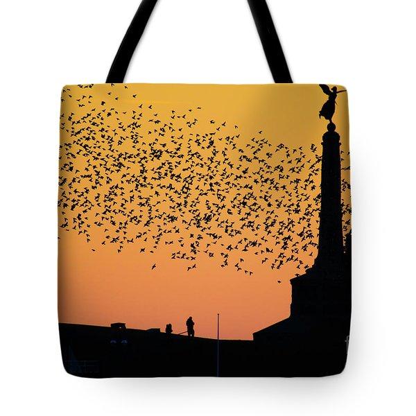 Aberystwyth Starlings Tote Bag