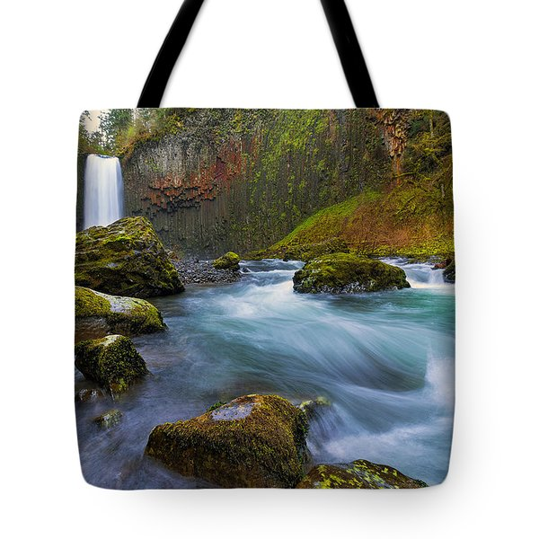 Abiqua Falls In Spring Tote Bag by David Gn