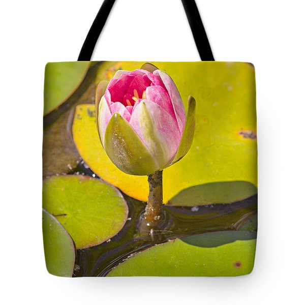About To Bloom Tote Bag