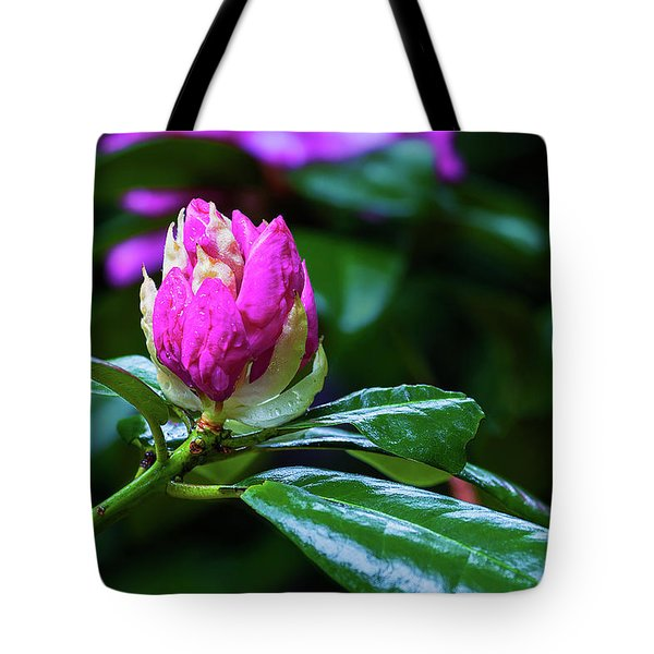 About To Unfold Tote Bag