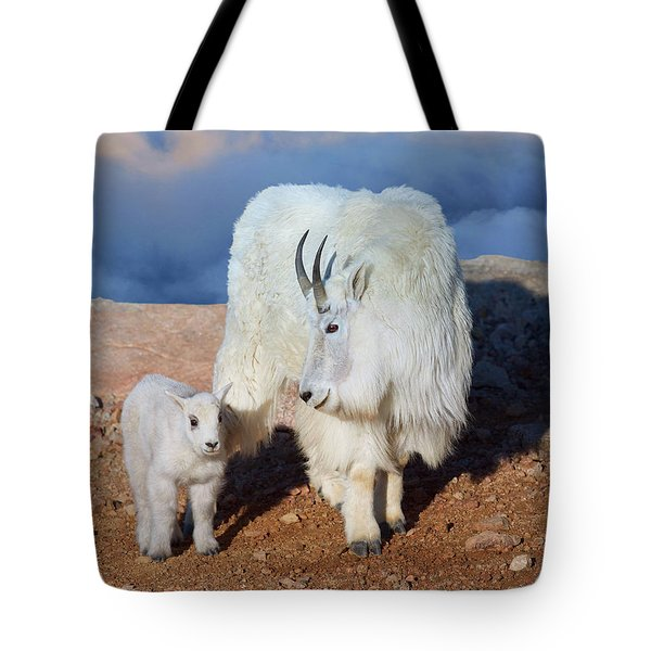 Above The Clouds. Mother And Kid - A Young Rocky Mountain Goat Stands Inquisitively Next To Its Mom Tote Bag