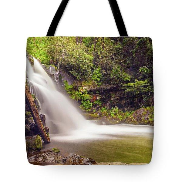 Abrams Falls Tote Bag