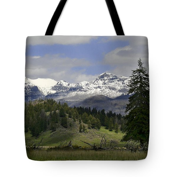 Absaroka Mts Wyoming Tote Bag