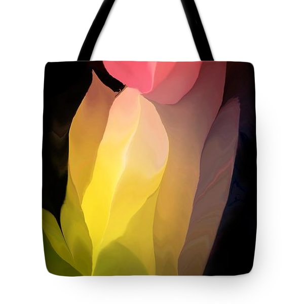 Abstract 082312 Tote Bag