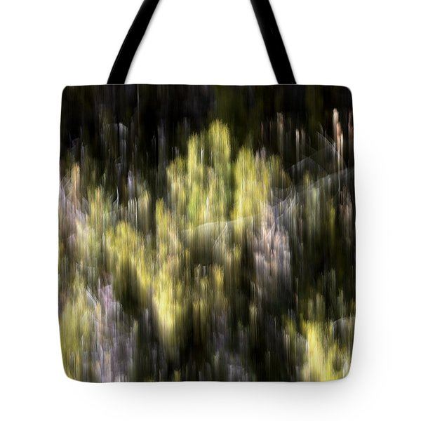 Tote Bag featuring the photograph Abstract 3317 In The Forest by Kae Cheatham