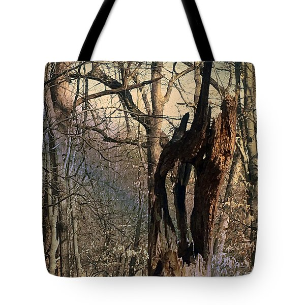 Tote Bag featuring the photograph Abstract Dead Tree by Robert G Kernodle