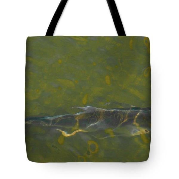 Abstract Fish 2 Tote Bag by Carolyn Dalessandro
