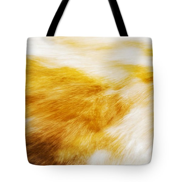 Abstract Flow Two Tote Bag