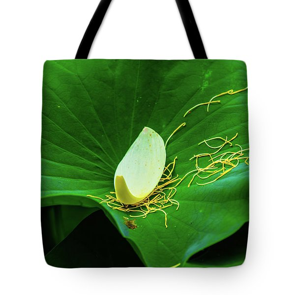 Tote Bag featuring the photograph Abstract Leaves Of Green And Yellow by Dennis Dame