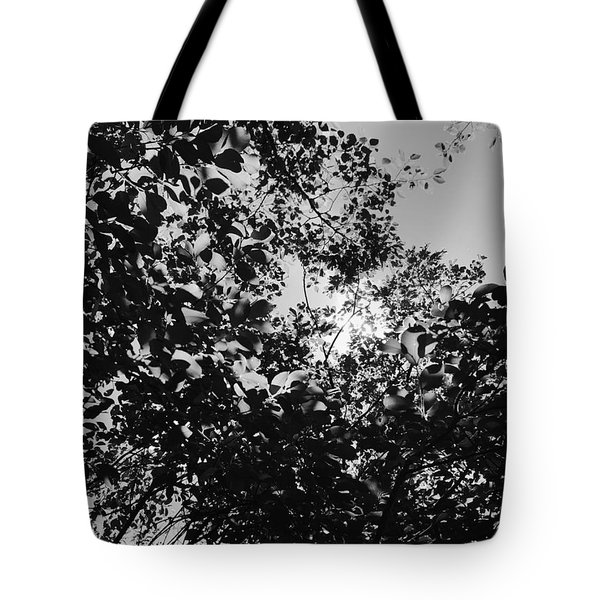 Tote Bag featuring the photograph Abstract Leaves Sun Sky by Chriss Pagani