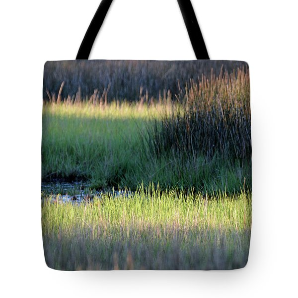 Tote Bag featuring the photograph Abstract Marsh Grasses by Bruce Gourley