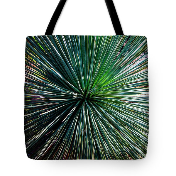 Abstract Nature Desert Cactus Photo 207 Blue Green Tote Bag