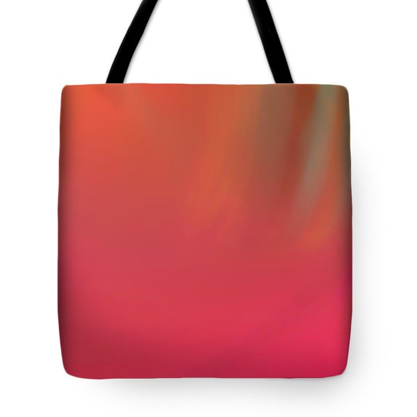 Abstract No. 16 Tote Bag