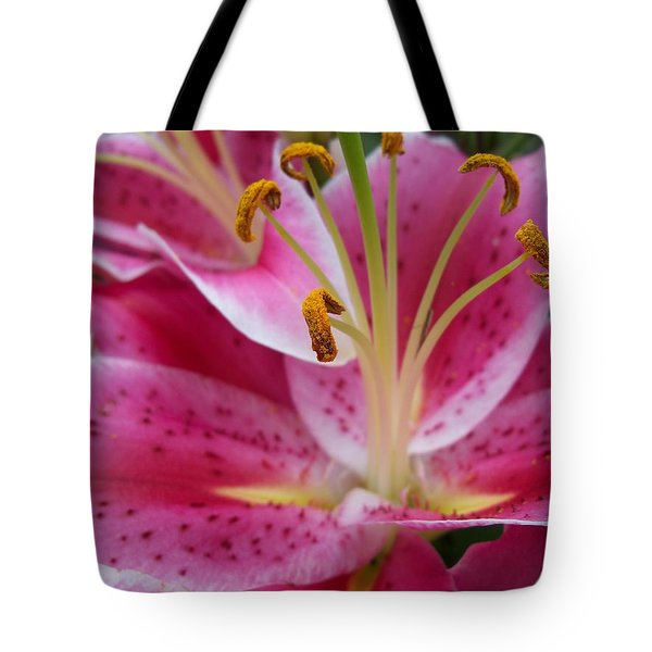 Abstract Pink Lily1 Tote Bag