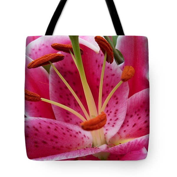 Abstract Pink Lily2 Tote Bag