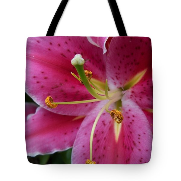 Abstract Pink Lily3 Tote Bag