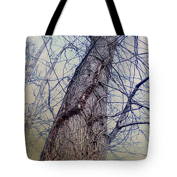 Tote Bag featuring the photograph Abstract Tree Trunk by Robert G Kernodle