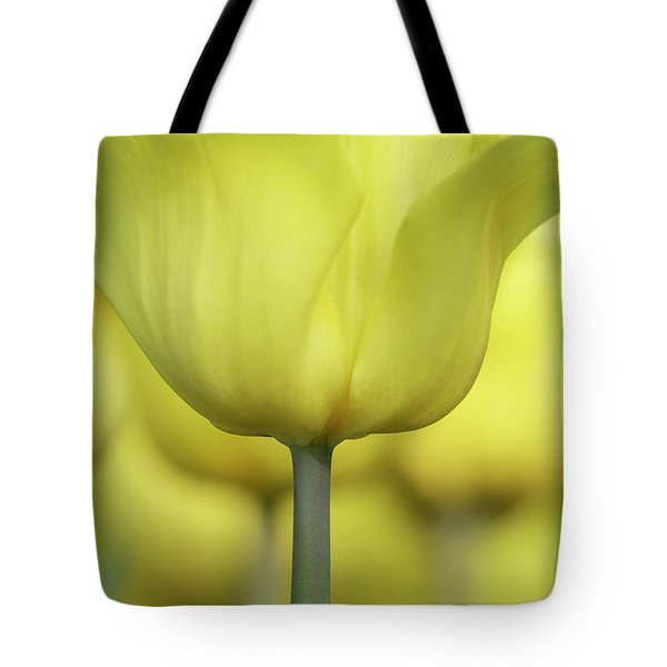Tote Bag featuring the photograph Abstract Yellow Tulips Flowers Photography Online Art Print Shop by Artecco Fine Art Photography