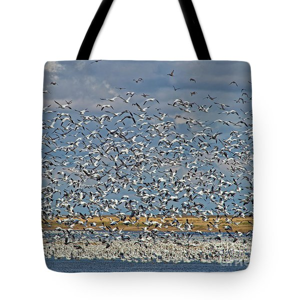 Tote Bag featuring the photograph Abundance.. by Nina Stavlund