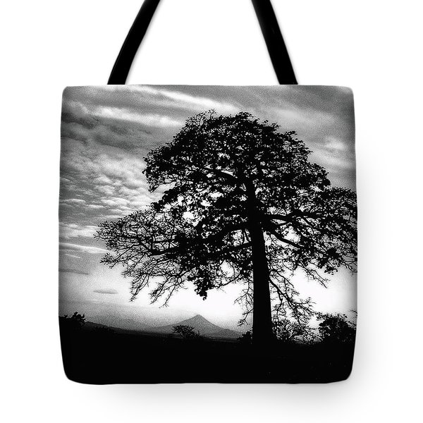 Tote Bag featuring the photograph Acacia And Volcano Silhouetted by Wayne King