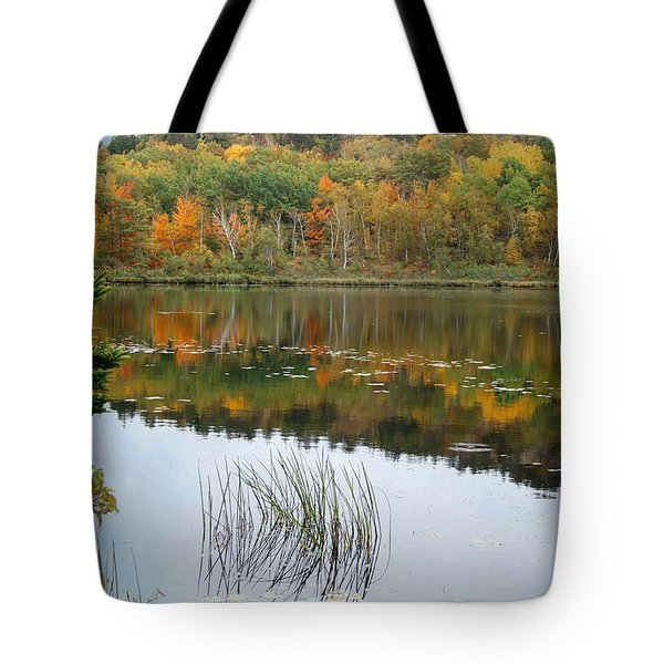 Acadia Autumn Tote Bag