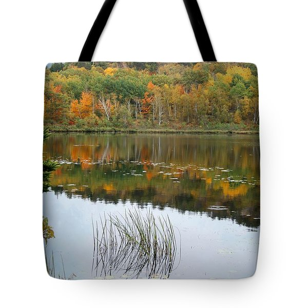 Tote Bag featuring the photograph Acadia Autumn by David Birchall