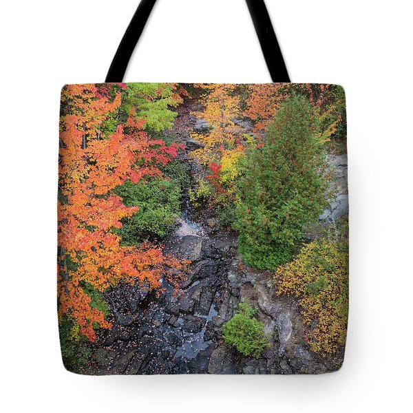 Tote Bag featuring the photograph Acadia Fall Colors 2 by Paul Schultz