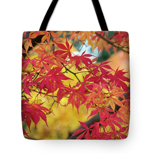 Tote Bag featuring the photograph Autumn Fire by Tim Gainey