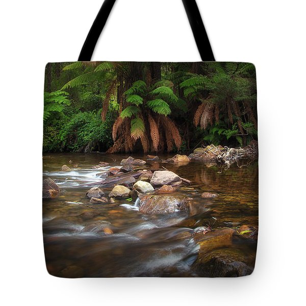 Tote Bag featuring the photograph Acheron River by Tim Nichols