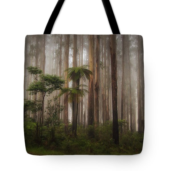 Tote Bag featuring the photograph Acheron Way by Tim Nichols