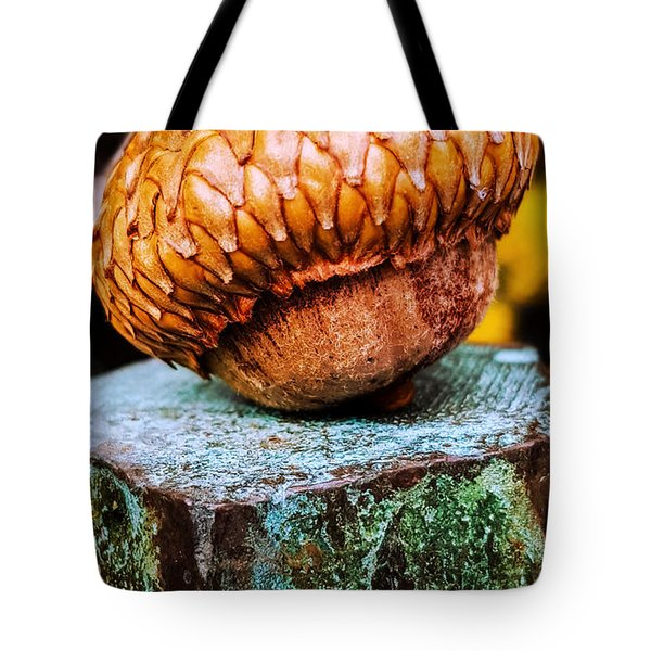Tote Bag featuring the photograph Acorn by Bruce Carpenter