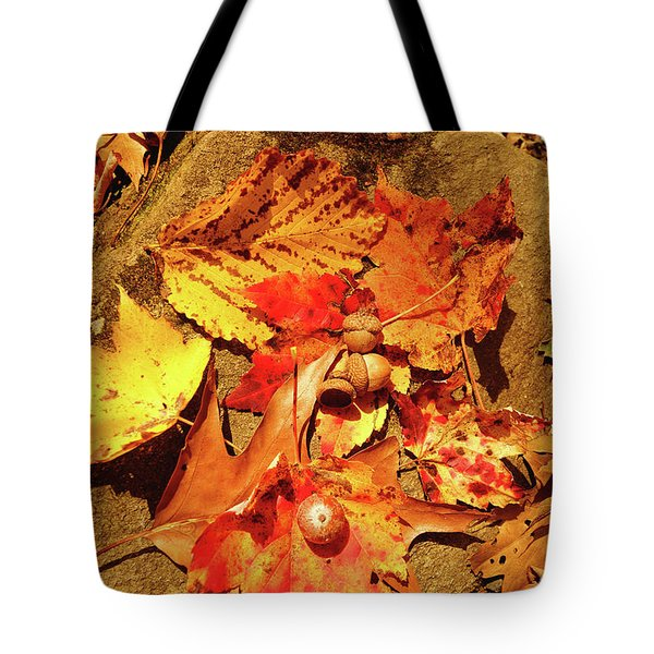 Tote Bag featuring the photograph Acorns Fall Maple Leaf by Meta Gatschenberger