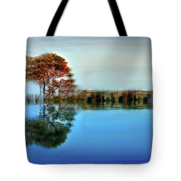Acoustic Guitar At Gordon's Pond Tote Bag