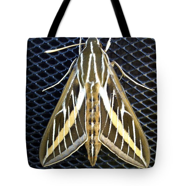 Acronicta Leporina Tote Bag