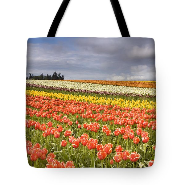 Across Colorful Fields Tote Bag by Mike  Dawson