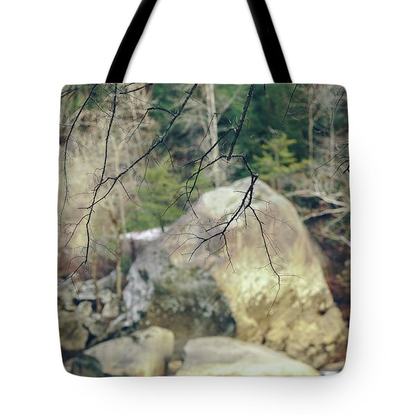 Across From Eagle Falls Tote Bag