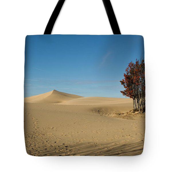 Tote Bag featuring the photograph Across The Sand 2 by Tara Lynn