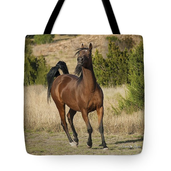 Acting Silly Tote Bag by Karen Slagle