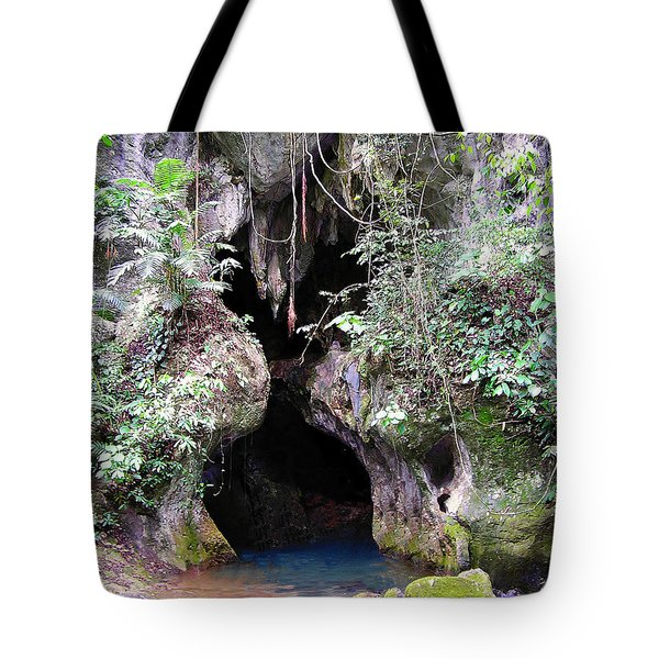 Actun Tunichil Muknal Entrance Tote Bag
